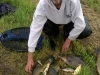 Tribute to Chris Bishop with Bream & Tench
